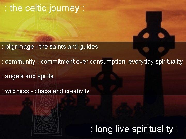 : the celtic journey : : pilgrimage - the saints and guides : community