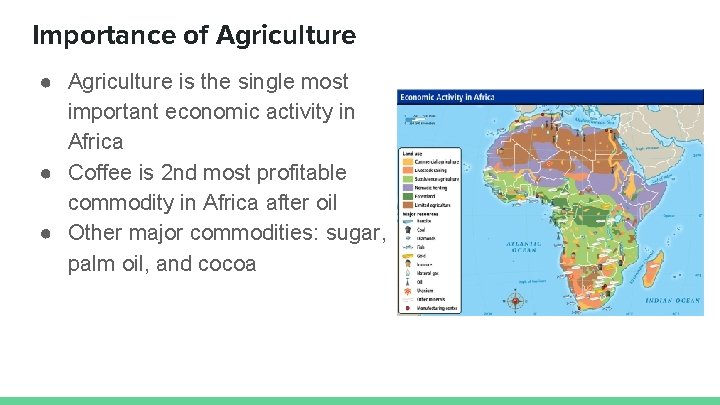 Importance of Agriculture ● Agriculture is the single most important economic activity in Africa