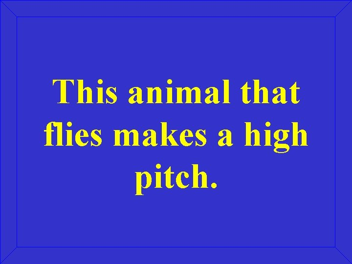 This animal that flies makes a high pitch.