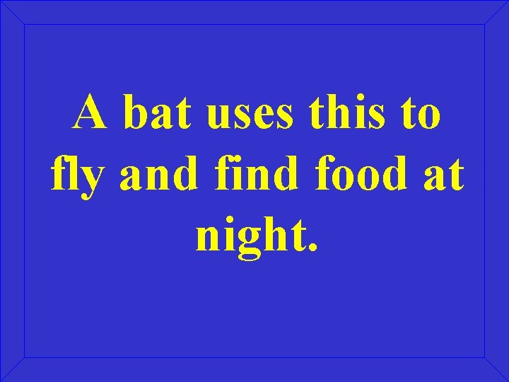 A bat uses this to fly and find food at night.