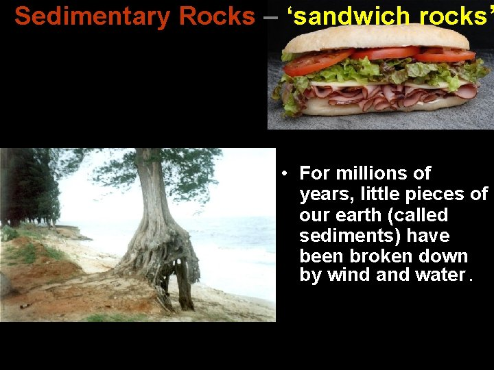Sedimentary Rocks – 'sandwich rocks' • For millions of years, little pieces of our