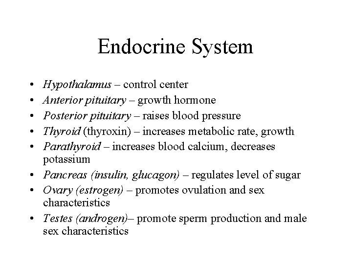 Endocrine System • • • Hypothalamus – control center Anterior pituitary – growth hormone
