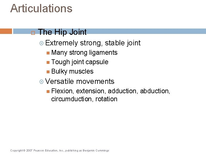 Articulations The Hip Joint Extremely strong, stable joint Many strong ligaments Tough joint capsule