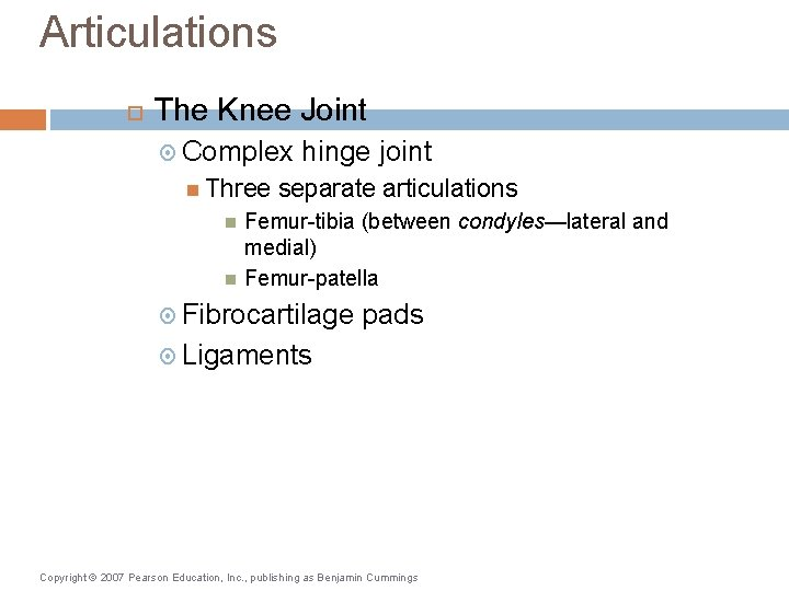 Articulations The Knee Joint Complex Three hinge joint separate articulations Femur-tibia (between condyles—lateral and