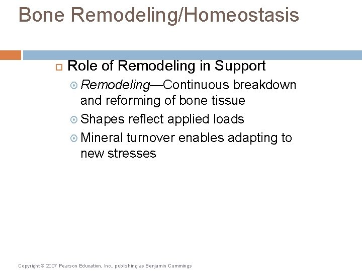 Bone Remodeling/Homeostasis Role of Remodeling in Support Remodeling—Continuous breakdown and reforming of bone tissue