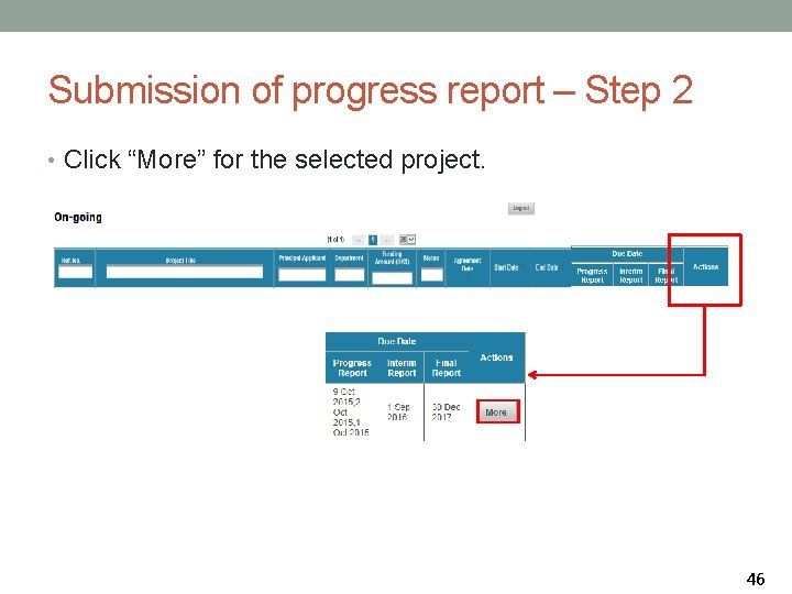 """Submission of progress report – Step 2 • Click """"More"""" for the selected project."""