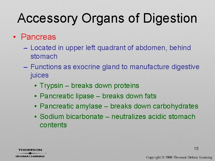 Accessory Organs of Digestion • Pancreas – Located in upper left quadrant of abdomen,