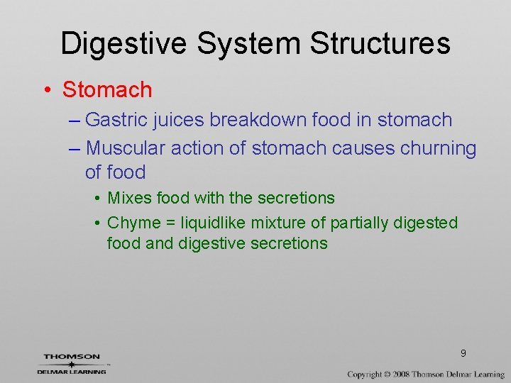 Digestive System Structures • Stomach – Gastric juices breakdown food in stomach – Muscular