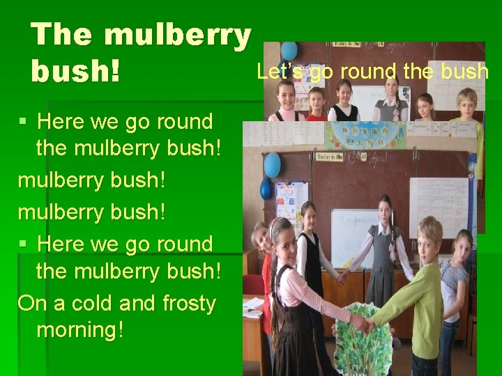 The mulberry Let's go round the bush! § Here we go round the mulberry
