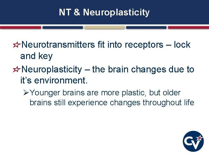 NT & Neuroplasticity Neurotransmitters fit into receptors – lock and key Neuroplasticity – the
