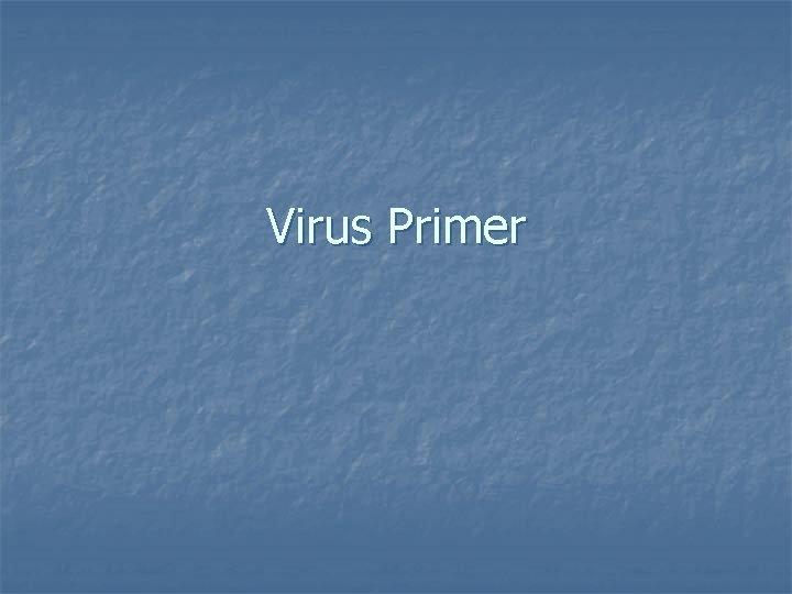 Virus Primer