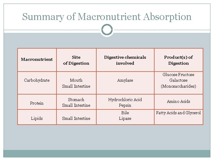 Summary of Macronutrient Absorption Macronutrient Carbohydrate Protein Lipids Site of Digestion Digestive chemicals involved
