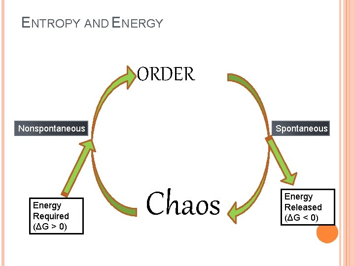 ENTROPY AND ENERGY ORDER Nonspontaneous Energy Required (ΔG > 0) Spontaneous Chaos Energy Released