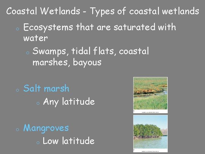 Coastal Wetlands - Types of coastal wetlands o o o Ecosystems that are saturated