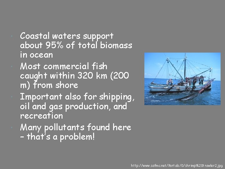 Coastal waters support about 95% of total biomass in ocean Most commercial fish caught