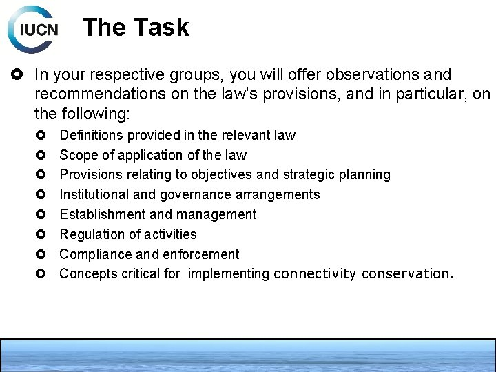 The Task In your respective groups, you will offer observations and recommendations on the