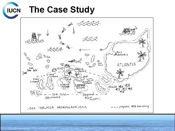 The Case Study