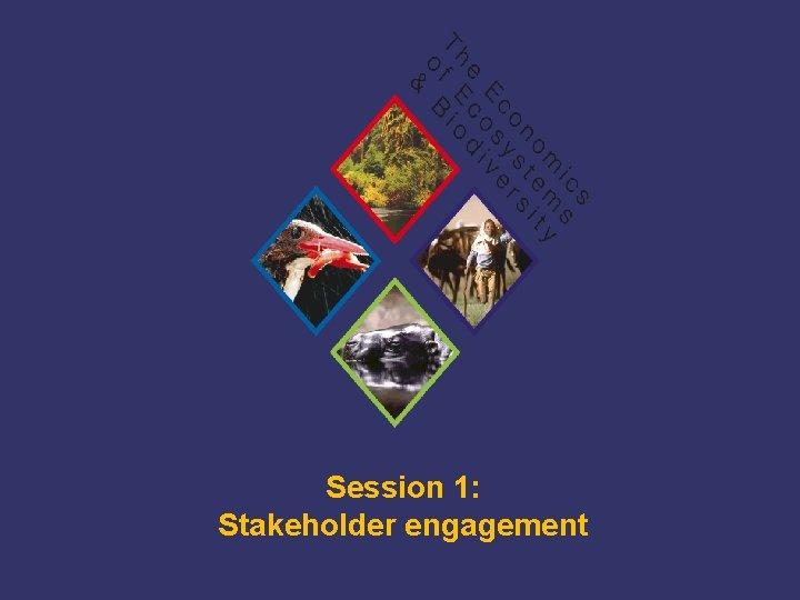Session 1: Stakeholder engagement TEEB Training