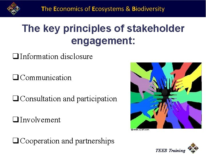 The key principles of stakeholder engagement: q Information disclosure q Communication q Consultation and