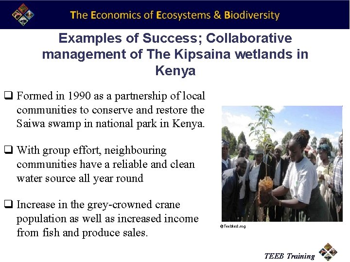 Examples of Success; Collaborative management of The Kipsaina wetlands in Kenya q Formed in