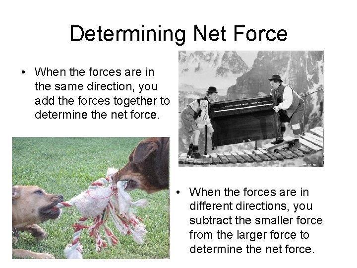 Determining Net Force • When the forces are in the same direction, you add