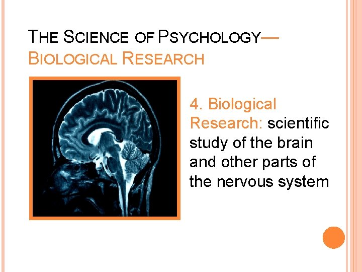 THE SCIENCE OF PSYCHOLOGY— BIOLOGICAL RESEARCH 4. Biological Research: scientific study of the brain