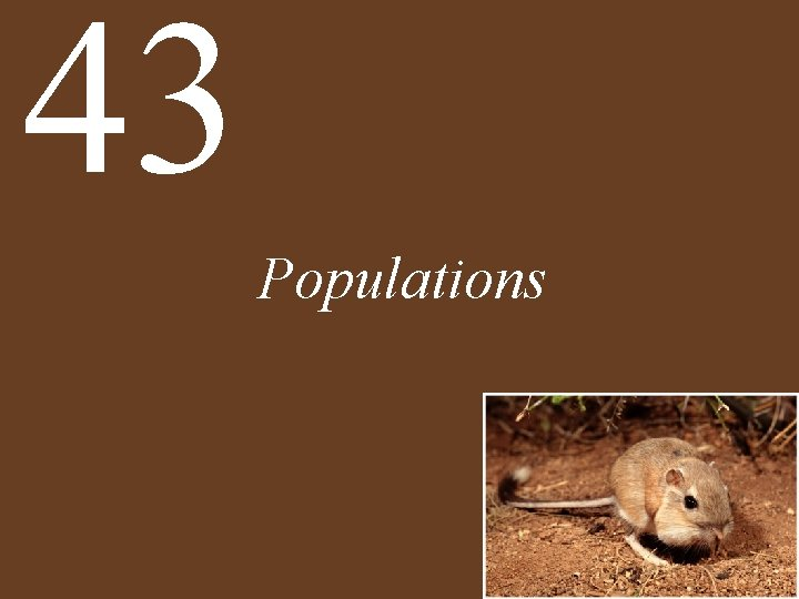 43 Populations