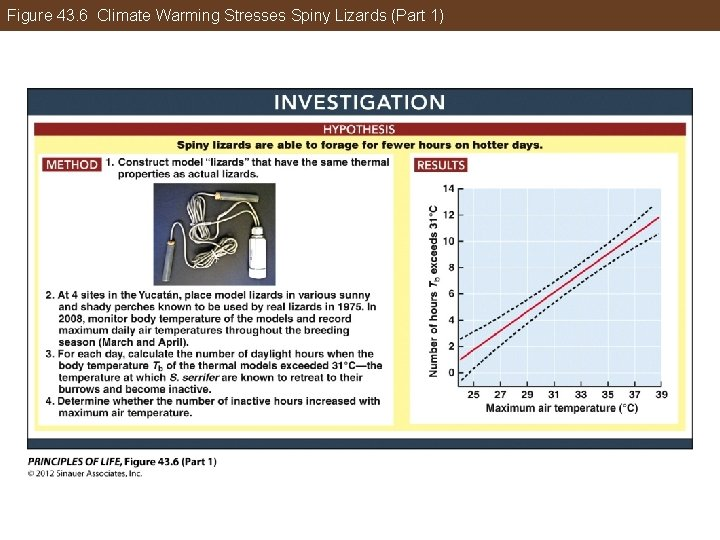 Figure 43. 6 Climate Warming Stresses Spiny Lizards (Part 1)