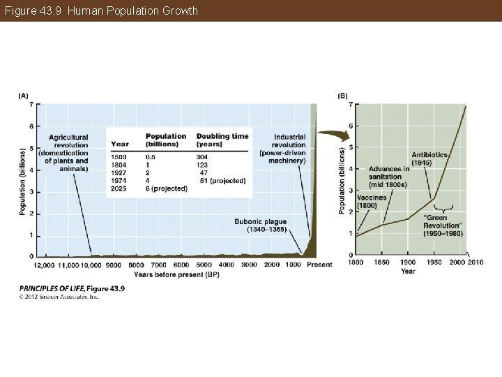 Figure 43. 9 Human Population Growth