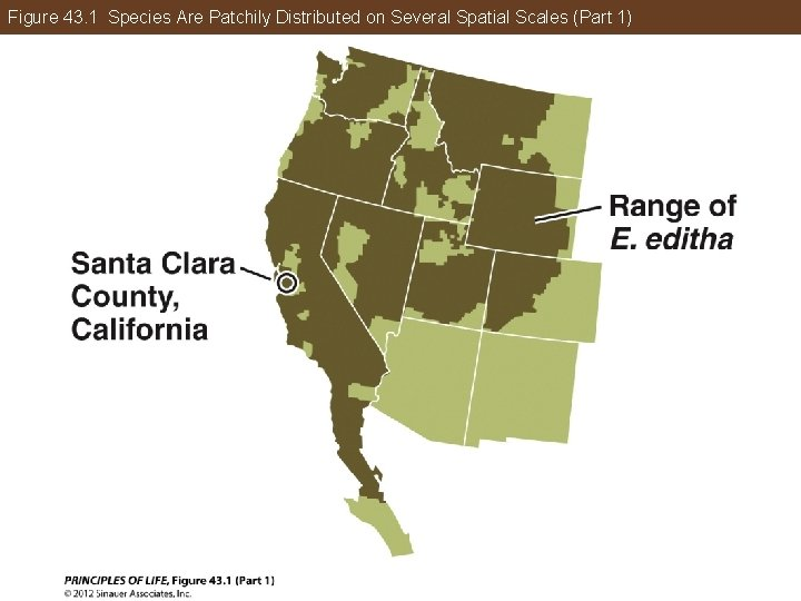 Figure 43. 1 Species Are Patchily Distributed on Several Spatial Scales (Part 1)