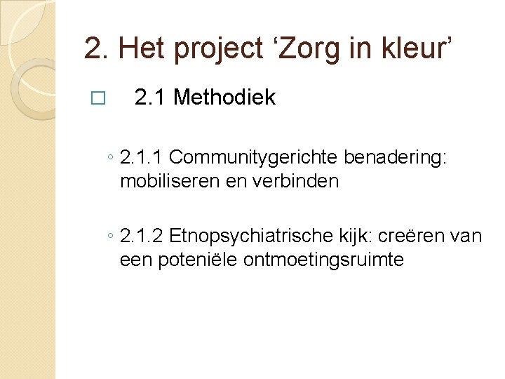 2. Het project 'Zorg in kleur' � 2. 1 Methodiek ◦ 2. 1. 1