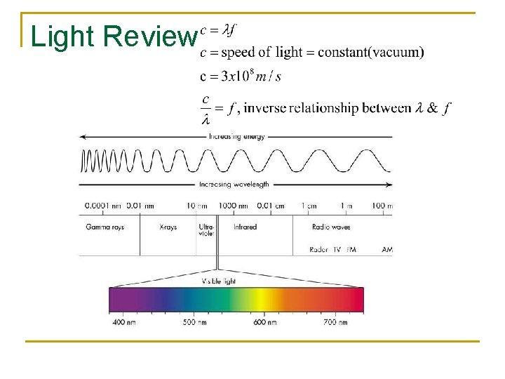 Light Review