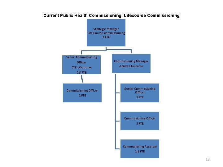 Current Public Health Commissioning: Lifecourse Commissioning Strategic Manager Life Course Commissioning 1 FTE Senior