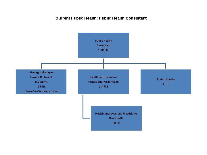 Current Public Health: Public Health Consultant 1. 08 FTE Strategic Manager Leisure Culture &