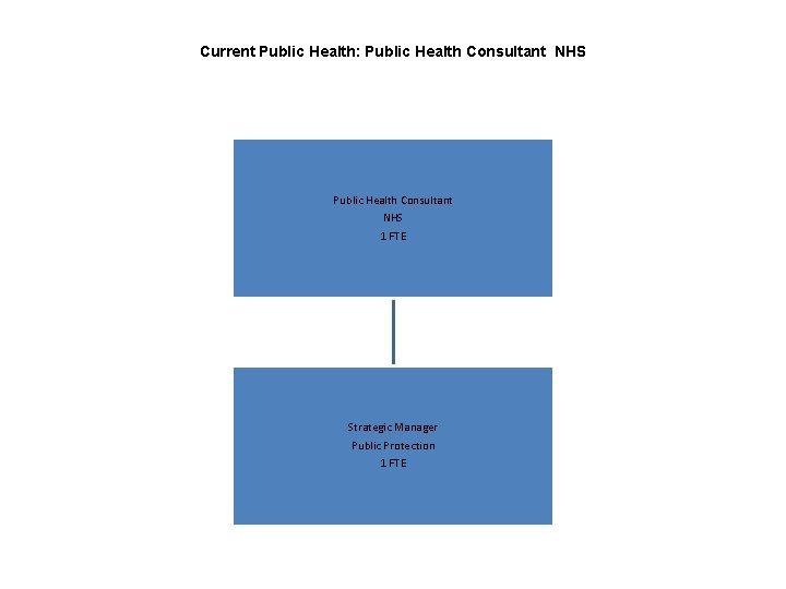 Current Public Health: Public Health Consultant NHS 1 FTE Strategic Manager Public Protection 1