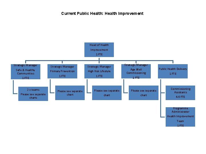 Current Public Health: Health Improvement Head of Health Improvement 1 FTE Strategic Manager Safe