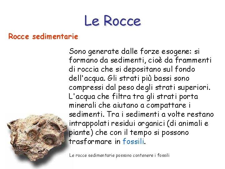 Le Rocce sedimentarie Sono generate dalle forze esogene: si formano da sedimenti, cioè da