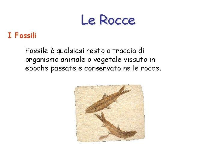 Le Rocce I Fossili Fossile è qualsiasi resto o traccia di organismo animale o
