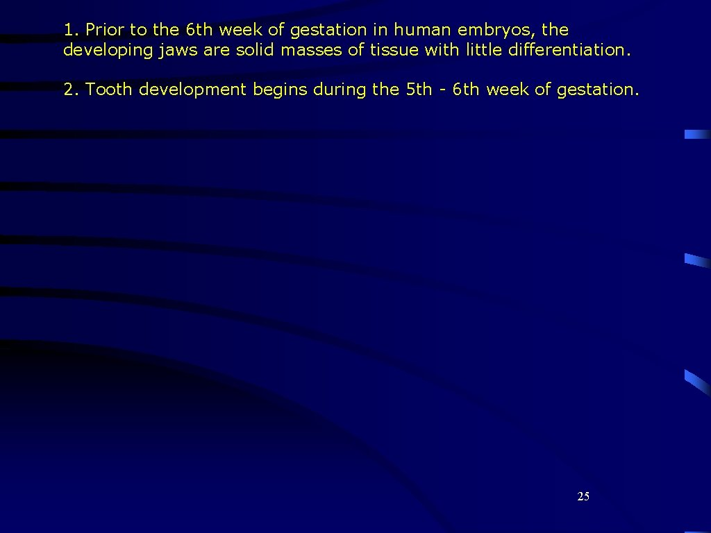 1. Prior to the 6 th week of gestation in human embryos, the developing