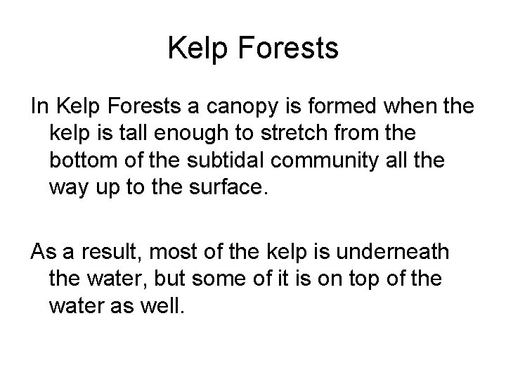 Kelp Forests In Kelp Forests a canopy is formed when the kelp is tall