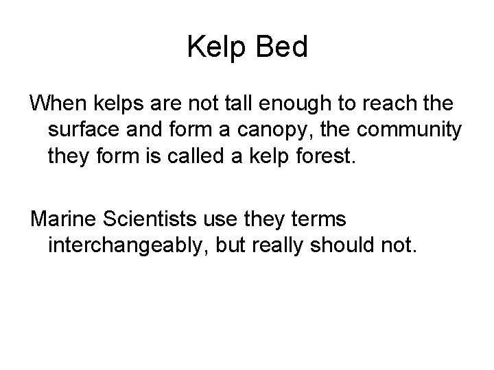 Kelp Bed When kelps are not tall enough to reach the surface and form
