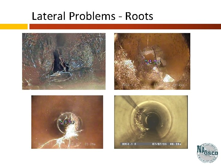 Lateral Problems - Roots