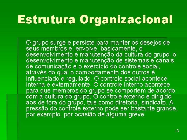 Estrutura Organizacional O grupo surge e persiste para manter os desejos de seus membros