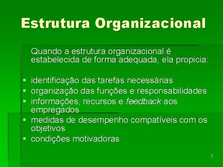 Estrutura Organizacional Quando a estrutura organizacional é estabelecida de forma adequada, ela propicia: §