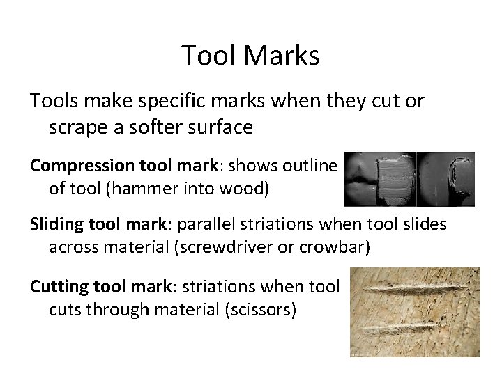 Tool Marks Tools make specific marks when they cut or scrape a softer surface