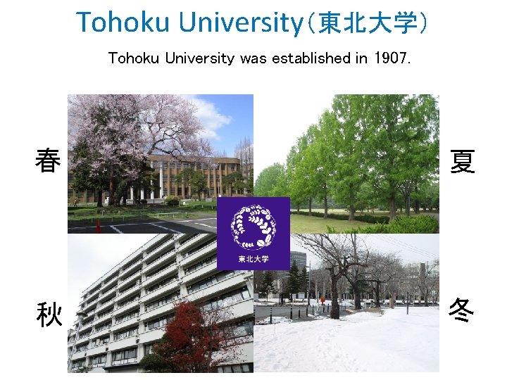 Tohoku University(東北大学) Tohoku University was established in 1907. 春 夏 秋 冬