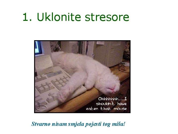 1. Uklonite stresore Stvarno nisam smjela pojesti tog miša!