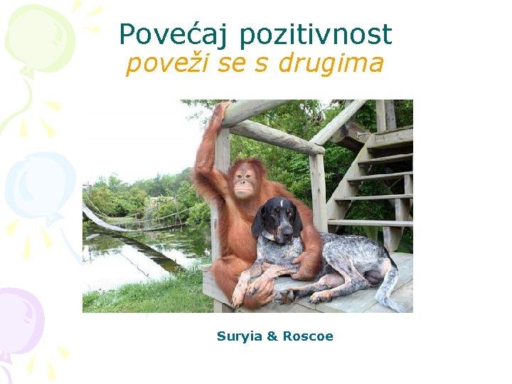 Povećaj pozitivnost poveži se s drugima Suryia & Roscoe