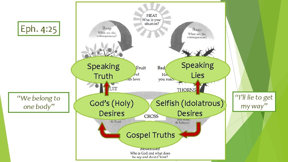 """Eph. 4: 25 Speaking Lies Speaking Truth """"We belong to one body"""" God's (Holy)"""