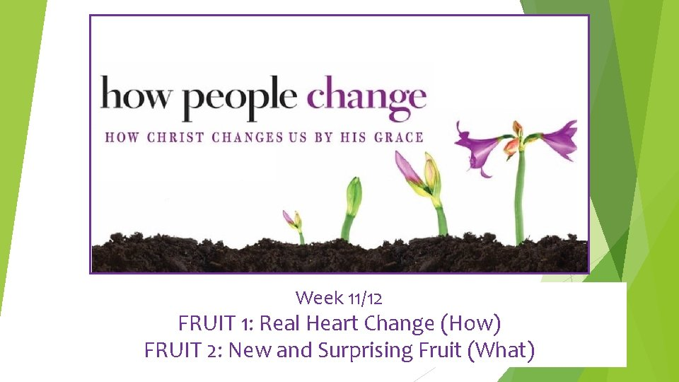 Week 11/12 FRUIT 1: Real Heart Change (How) FRUIT 2: New and Surprising Fruit